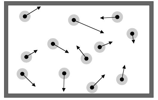 Gas Molecules